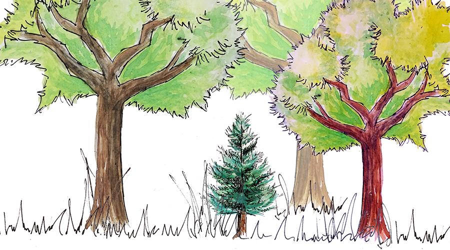treehugminderkleur