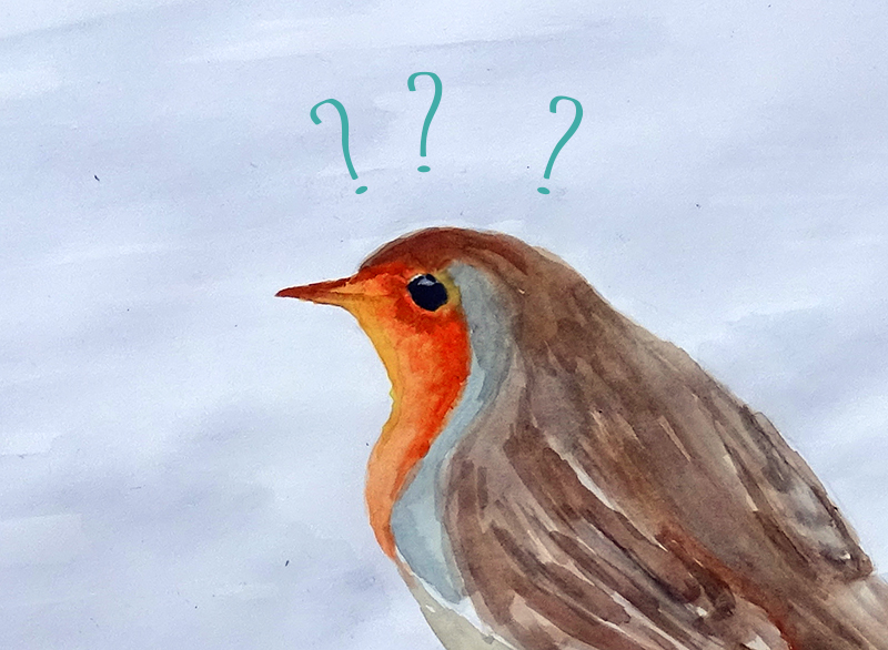 askingbird